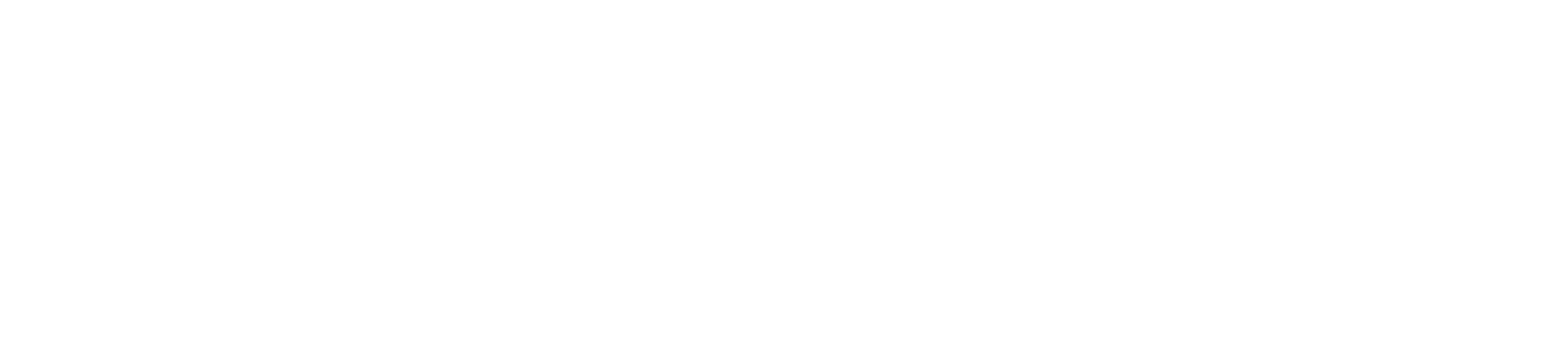 Relief Pain & Wellness Main Logo
